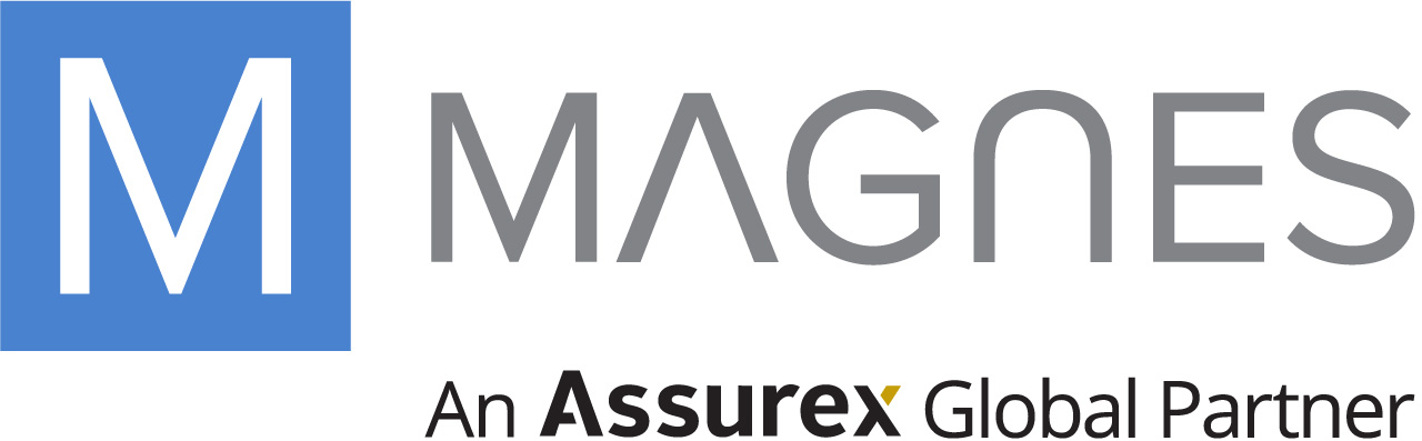 General - Magnes Logo 2017